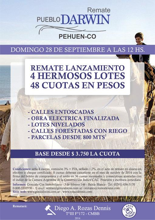 Remate – Pueblo Darwin – Pehuen-Co